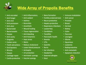 Propolis Benefits Chart_mjk_RHP_2015